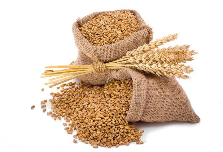 Die Getreidesorten, die ich produziere sind Weizen (triticum), Roggen (secale), Dinkel (triticum spelta), Gerste (hordeum),